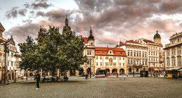 Работодатели в гос. секторах Чехии платят больше, чем в частных компаниях