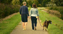 Работа в Европе для семейных пар: актуальность и перспективы